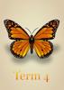 Artistic Butterflies - Term 4