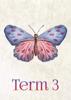 Watercolour Butterflies - Term 3