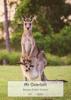Kangaroo - Front Cover