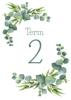 Eucalyptus - Term 2