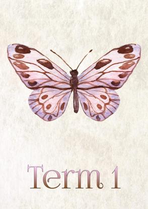 Watercolour Butterflies - Term 1