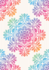Back Cover - Colourful Floral Design
